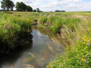Wasserrechtliche Anträge